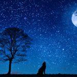 夜の散歩のスゝメ